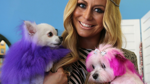 World S Most Pampered Pets Channel 5